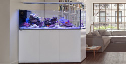 Red Sea Reefer™ Peninsula Systeme
