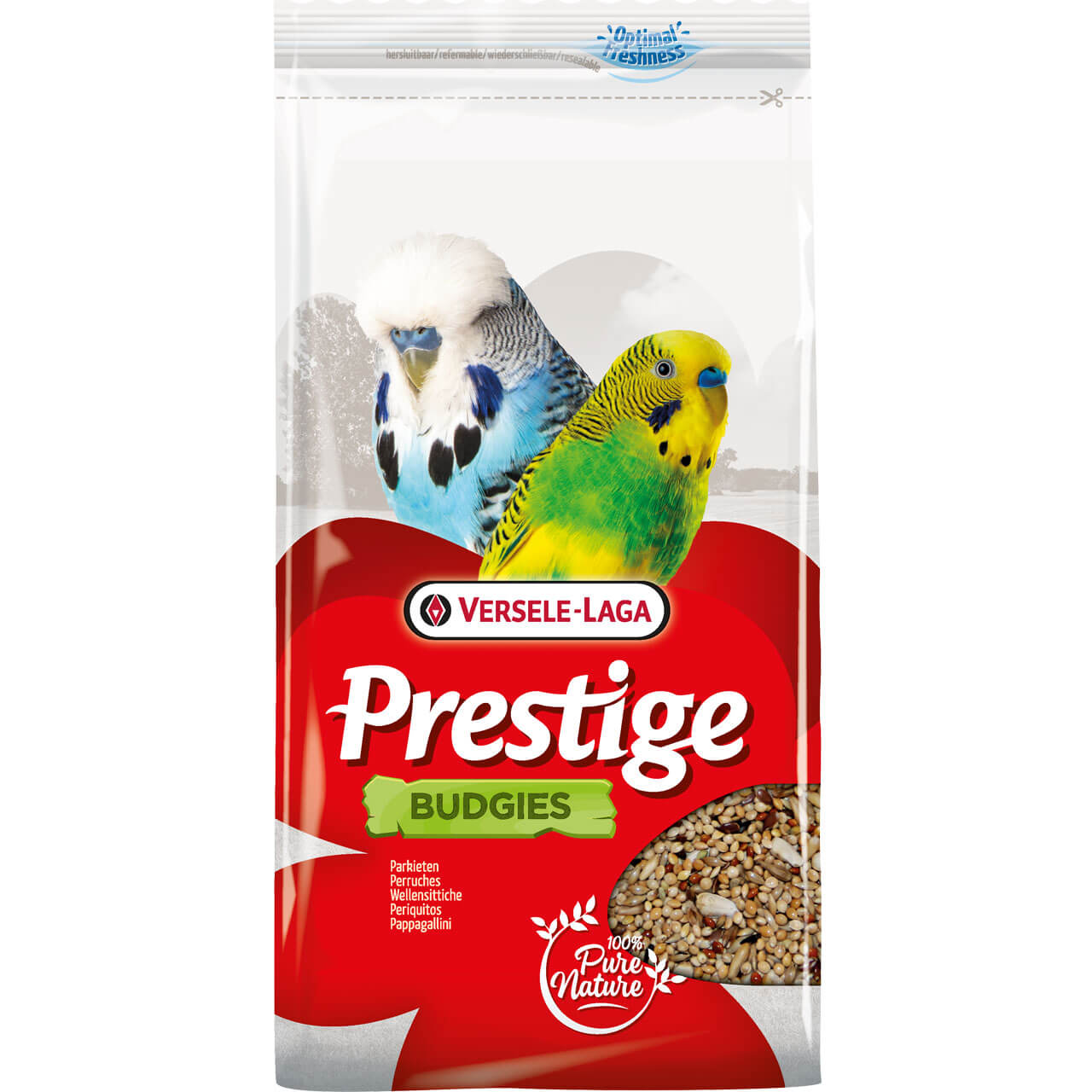 Prestige Wellensittiche